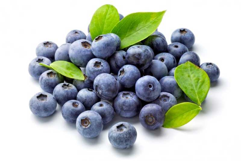 خواص بلوبری blueberries