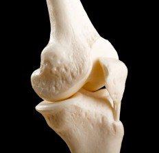سلامت استخوان bone-joint
