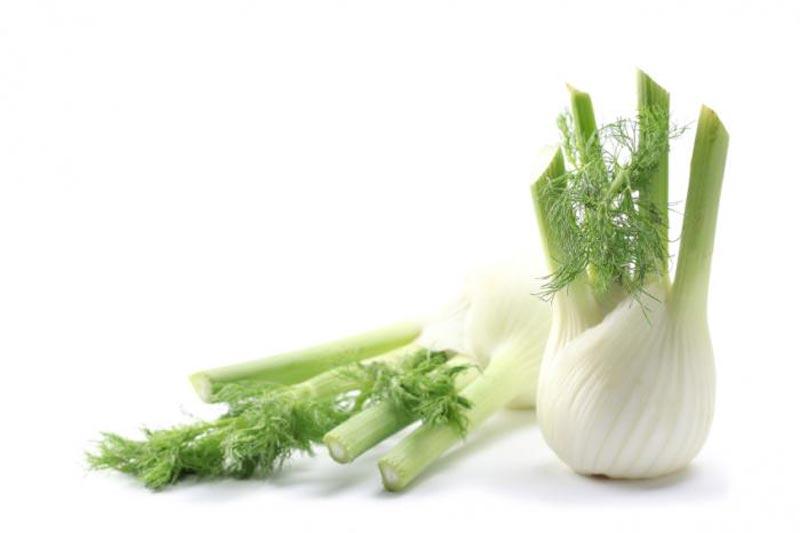 رازیانه fennel