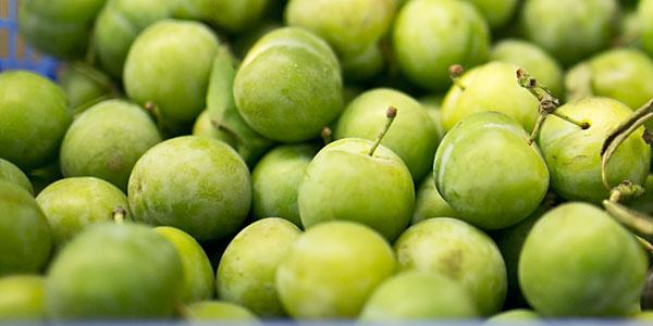 گوجه سبز greengage