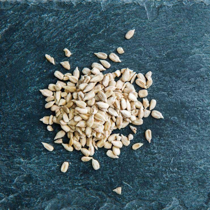 رژیم غذایی سم زدایی بدن,دانه آفتابگردان و سم زدایی